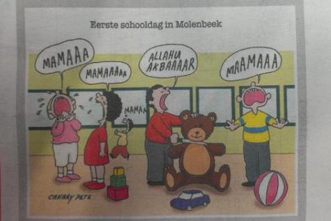 Le dessin polémique paru sur le Het Belang van Limburg